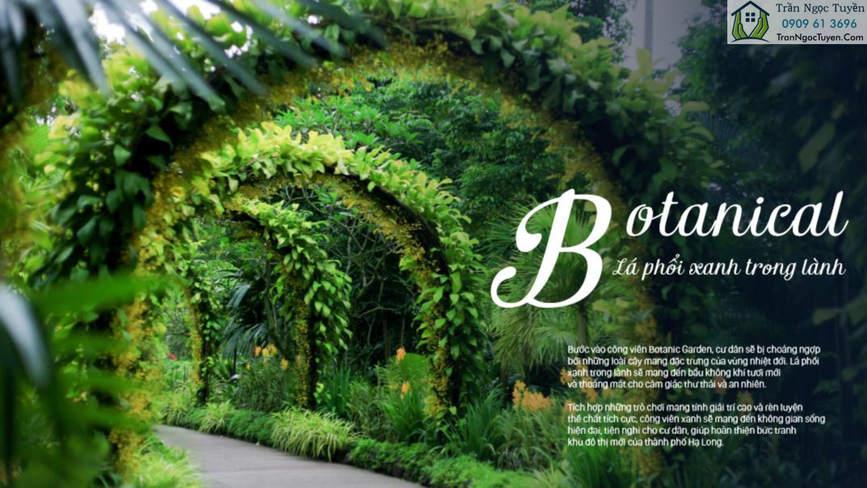 FLC Tropical Cao Xanh Hà Khánh Botanical lá phổi xanh trong lành