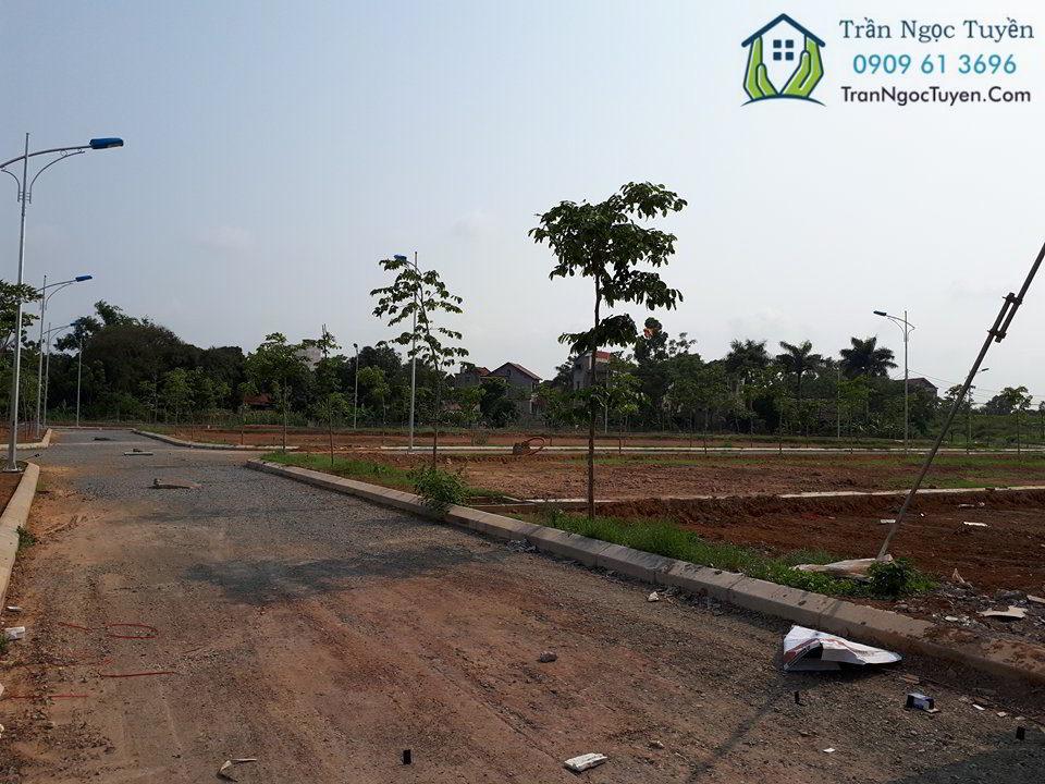 biệt thự dự án Hưng Hóa Tam Nông Phú Thọ